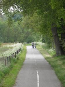 Een van de vele fietspaden door de natuur